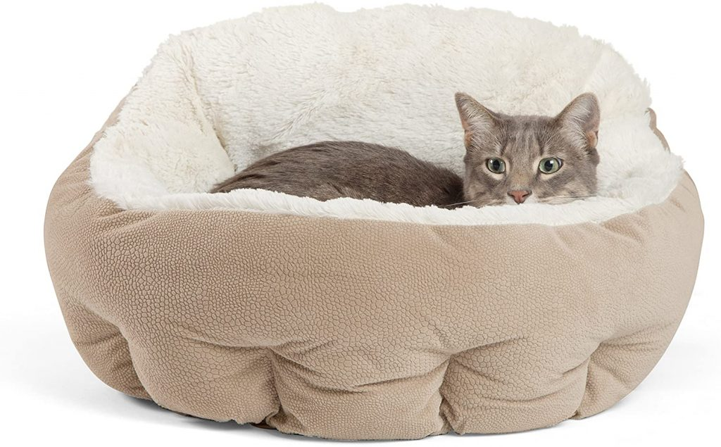 Best friend deep dish cuddled self warming cat bed large