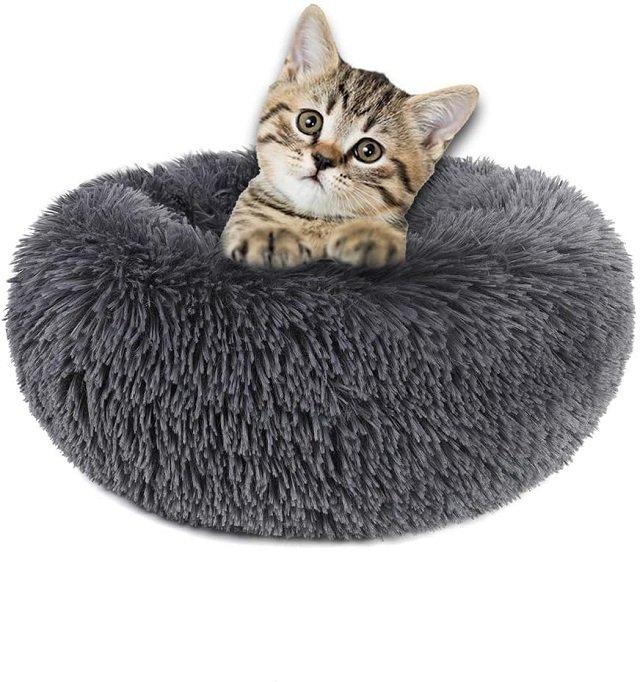 round doughnut kitten cat bed