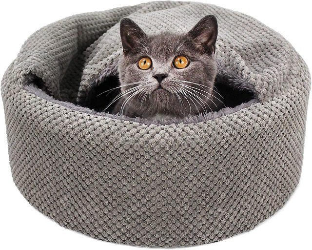 washable cat bed for kittens