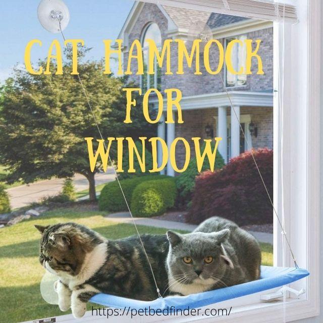 Cat Hammock For Window