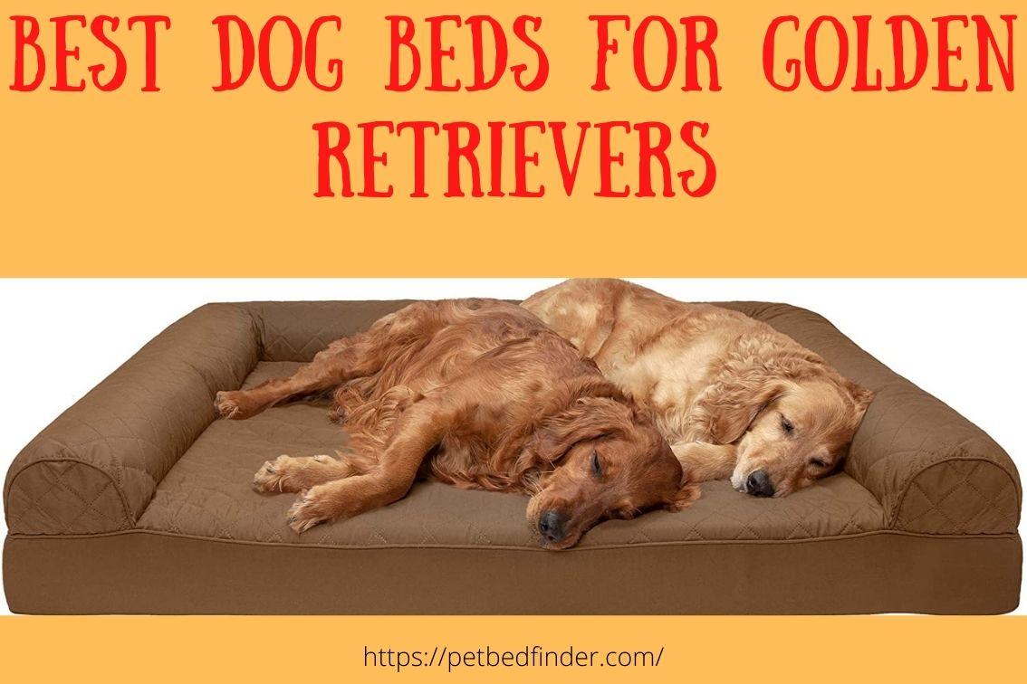 best dog beds for golden retrievers