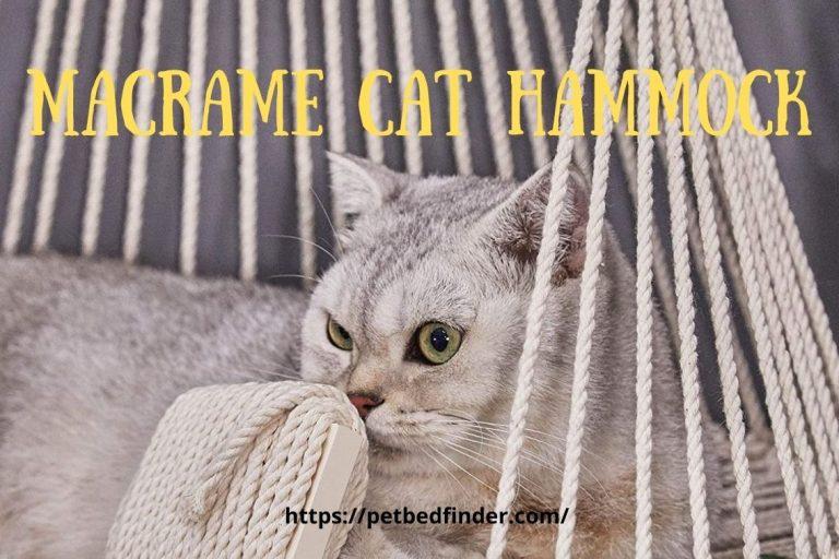 Macrame Hanging Cat Hammock