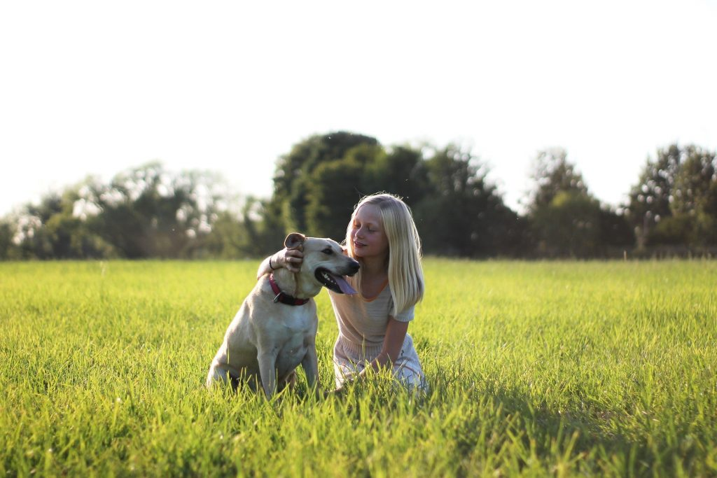 labrador with a girl in a field