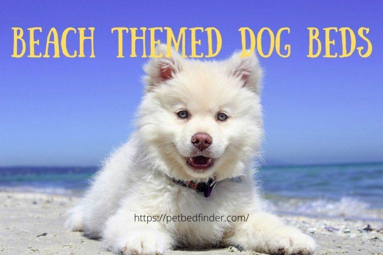 Beach Themed Dog Beds