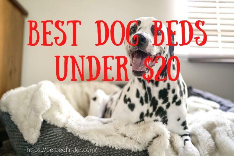 Best Dog Beds Under $20